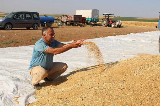 Çiftçiler: Kazancımızın büyük kısmı elektrik faturalarına gidiyor