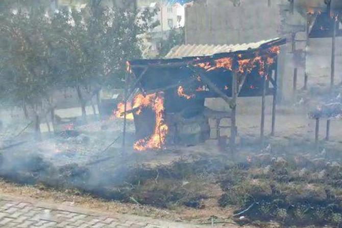 Diyarbakır'da 3 ton kışlık odun yangında kül oldu