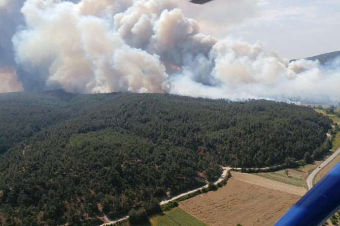 Gelibolu Yarımadası'nda çıkan orman yangını devam ediyor