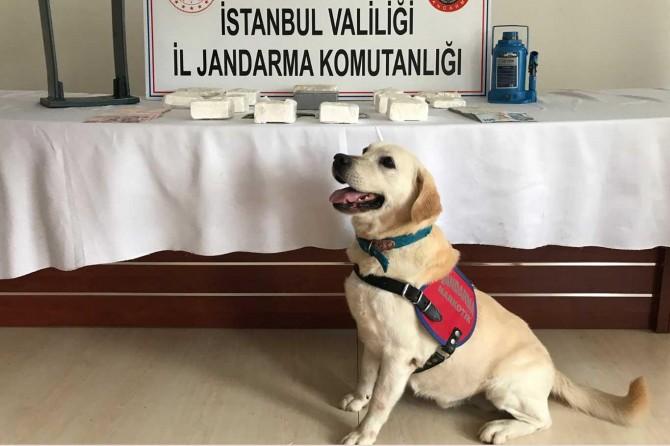 İstanbul'da uyuşturucu operasyonu: 4 kişi tutuklandı