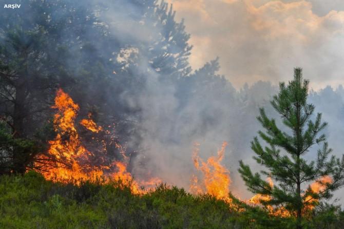 İstanbul Sarıyer Ayazağa'da orman yangını