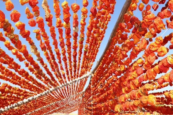 Gaziantep'te kurutmalık sebze sezonu başladı