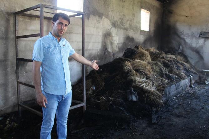 Hani'de yanan ahırıyla yüzbinlerce lira maddi zarara uğrayan adam yardım bekliyor