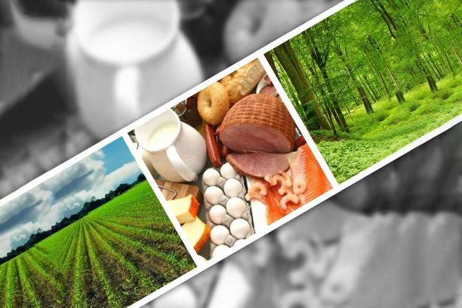 Gıda, tarım ve orman alanındaki düzenleme hakkında uzmanlar ne diyor?