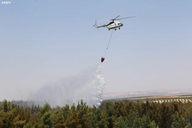 Eceabat'ta orman yangını