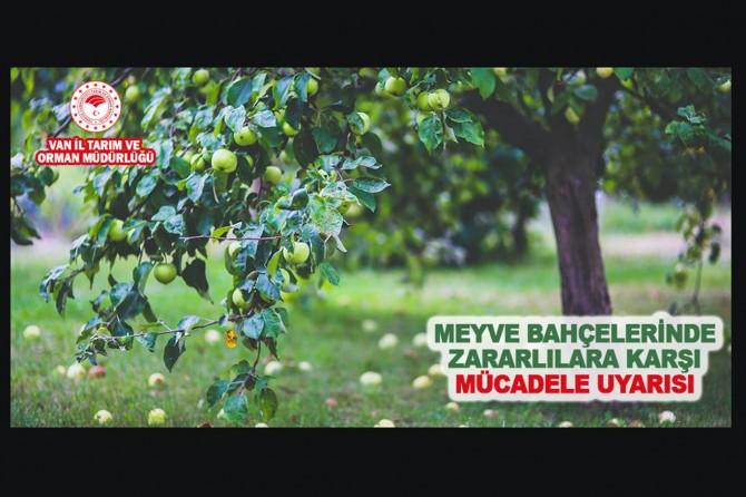 Meyve bahçelerinde zararlılara karşı mücadele uyarısı