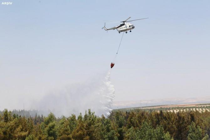 Soma'da orman yangını