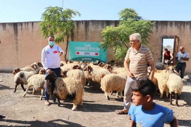 SUDKOM bünyesinde Barış Pınarı Bölgesinde kurban kesimi yapıldı