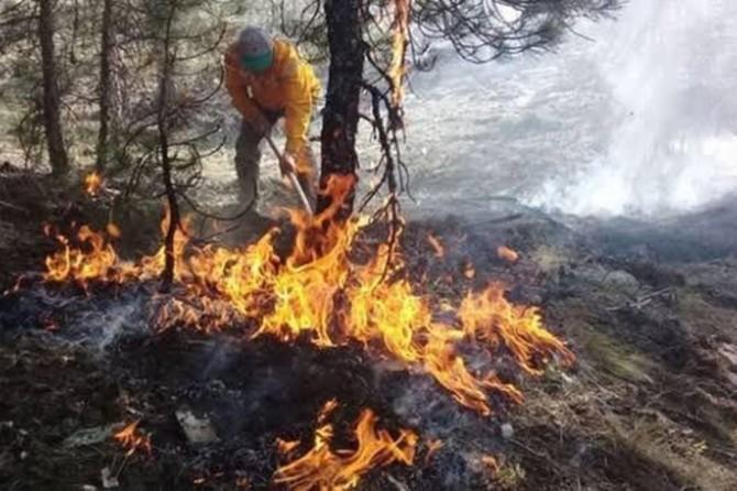 Bakan Pakdemirli: 4 ilde çıkan orman yangını kontrol altına alındı