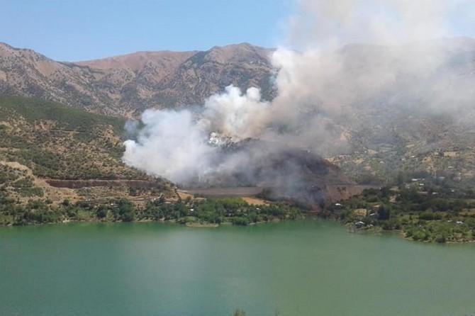 Elazığ'da anız yangını ormana sıçradı