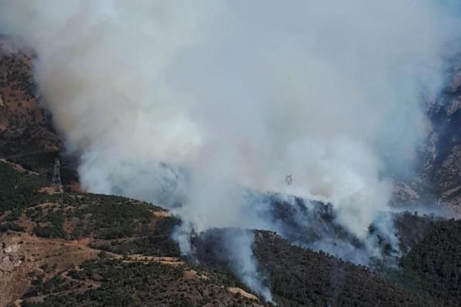 İçişleri Bakanlığından valiliklere orman yangınları genelgesi