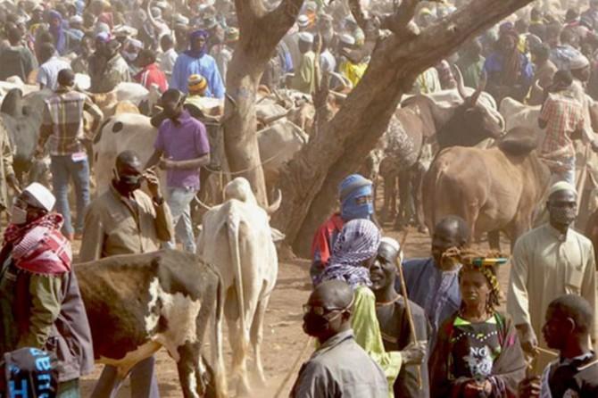 Dışişleri Bakanlığı: Burkina Faso'daki menfur terör eylemini kınıyoruz