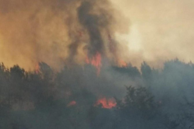 İzmir'de makilik alanda yangın: 5 site boşaltıldı