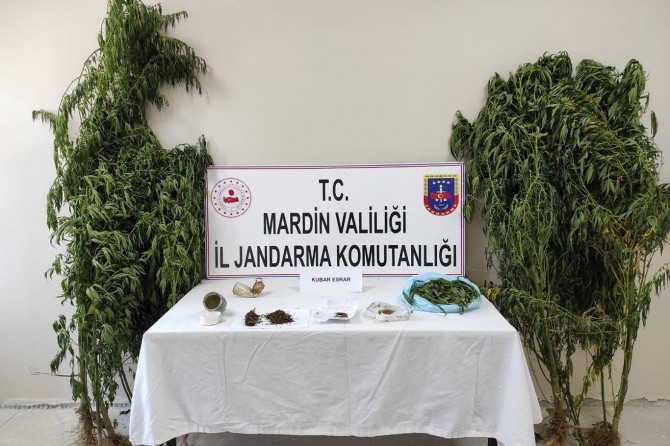 Mardin'de uyuşturucu operasyonda 2 kişi gözaltına alındı