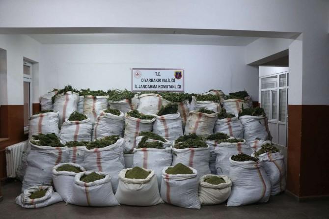 Diyarbakır'da 4,5 milyonun üzerinde kök kenevir 800 kg esrar gele geçirildi