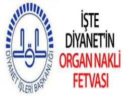 Diyanet'in Organ Nakli Fetvası