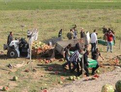 Van`da kaza: 6 Ölü video foto