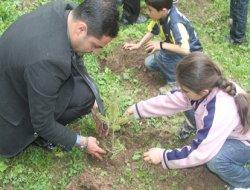 Milli Eğitim'den Bahçesaray'a 300 fidan