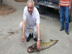 20 kiloluk balığı elleriyle yakaladı