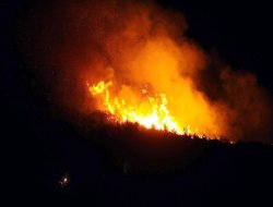PKK Diyarbakır'da iş makinası yaktı
