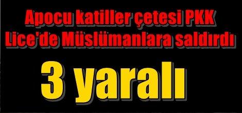 Apocu katiller çetesi PKK Lice'de Müslümanlara saldırdı