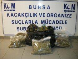 İnegöl'de uyuşturucu baskınlarında 43 gözaltı