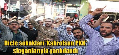 Dicle sokakları 'Kahrolsun PKK' sloganlarıyla yankılandı
