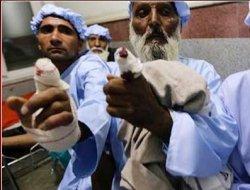 Taliban, oy kullanan boyalı parmakları kesti!