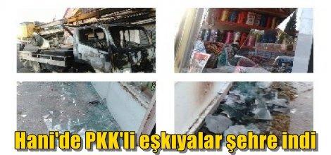 Hani'de PKK'li eşkıyalar şehre indi