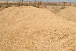 Tahıldaki yüksek verim saman fiyatlarını olumsuz etkiledi