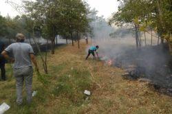 Ergani'de kopan elektrik telleri yangına neden oldu
