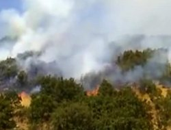 """""""Bingöl'deki orman yangını PKK tarafından çıkarıldı"""""""