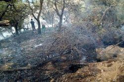 Yangının mağdur ettiği köylü yardım bekliyor