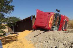 Çınarda mısır yüklü kamyon devrildi