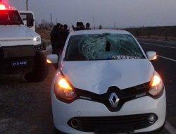 Çınarda otomobilin çarptığı yaya ağır yaralandı