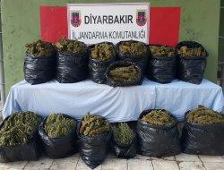 Diyarbakır'ın Çınar ilçesinde 135 kilo esrar ele geçirildi video-foto