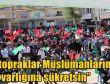 2016 Diyarbakır Dicle kutlu doğum etkinliği video foto peygamber sevdalıları