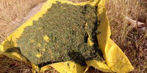 Lice'nin Uçarlı Mahallesi'nde uyuşturucu tacirlerine baskın