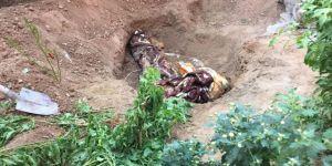 Derik'te eski askerlik şubesinde 2 ceset bulundu