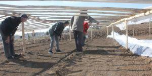 Bismil Belediyesinden 16 aileye tarımsal destek
