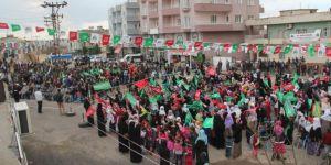 2017 Mardin Dargeçit kutlu doğum etkinliği video foto