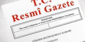Türkiye Hava Sporları Federasyonu kuruluyor