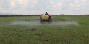 Diyarbakırlı çiftçiler pirinç ekimi öncesi zirai ilaçlama yapıyor