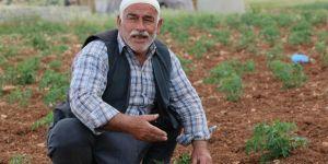 """""""10 gün içinde su bırakılmazsa bin 500 dönümlük sebzemiz kuruyacak"""""""