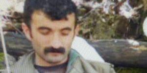 PKK'nin Tunceli Ovacık bölge sorumlusu öldürüldü