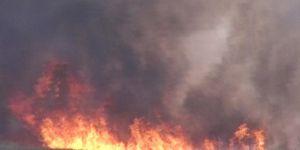 Mardin'de 150 dönümlük buğday tarlası yandı