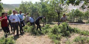 Bingöl Genç'te dev yarıkların oluştuğu köyde inceleme