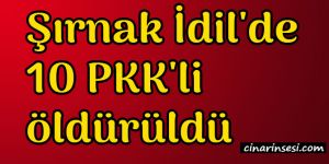 Şırnak İdil'de 10 PKK'li öldürüldü