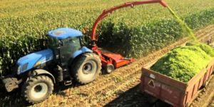 Tarım-ÜFE 2017 Haziran ayında azaldı