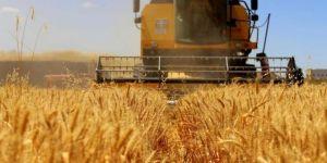 Buğday satış fiyatının düşürülmesine tepki